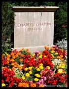 467px-Charlie_Chaplin_grave.jpg