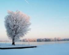 750px-Sneeuw1.jpg