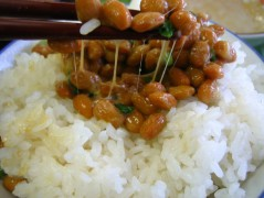 Natto_on_rice.jpg
