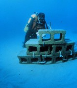 Artificialreef.jpg
