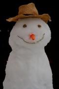 399px-Snowman-20100106.jpg
