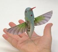 Nano_Hummingbird.jpg