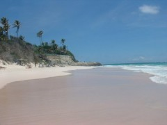 CRANE_BEACH_BARBADOS_VIEW_FROM_BOTTOM.jpg