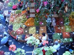 800px-Funchal_Mercado.jpg