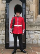 450px-Coldstream_Guards_sentry_-_20090804.jpg