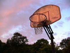 Basketball_Goal.jpg