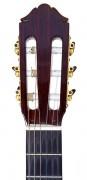 Guitar_headstock_front.jpg