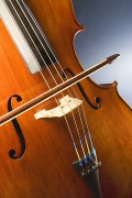 360px-Cello_study.jpg