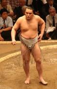 270px-Sumo_May09_Harumafuji.jpg