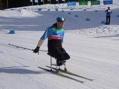 375px-Paralympic_XC_ski_sitting.JPG