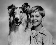 450px-Lassie_Tommy_Rettig_Circa_1955.jpg