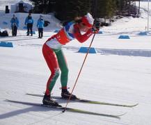 375px-Paralympic_XC_ski_one-arm.JPG