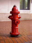 375px-Downtown_Charlottesville_fire_hydrant.jpg