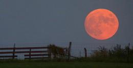450px-Harvest_moon.jpg