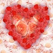 270px-Flower_heart.jpg